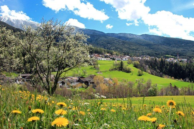 Spring holidays in Bressanone: a sea of flowers and snow-capped mountains