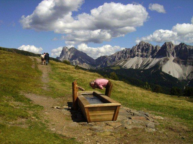 Vacanze in agriturismo biologico a S. Leonardo – Plose – Bressanone