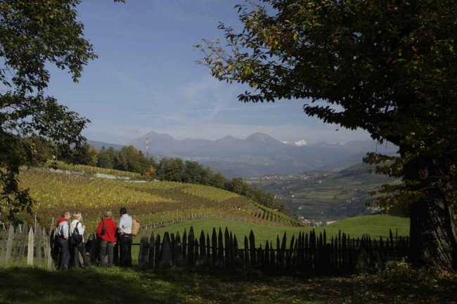 Hiking during your autumn holiday – discoveries in Isarco Valley
